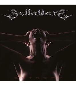 SELFAWARE - Entropy